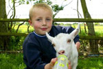 Avon Valley Wildlife Park baby goat with young boy
