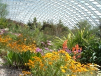 national botanic garden of wales inside view