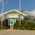 plantasia swansea outside view