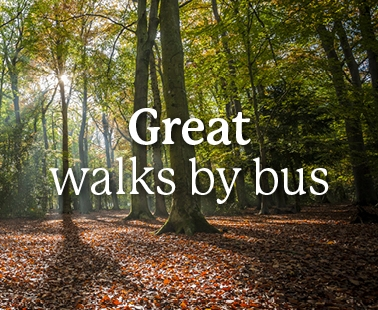 Great walks accessible by bus