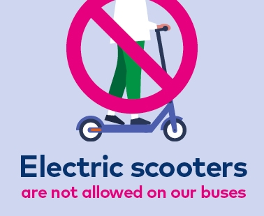 electric scooter policy