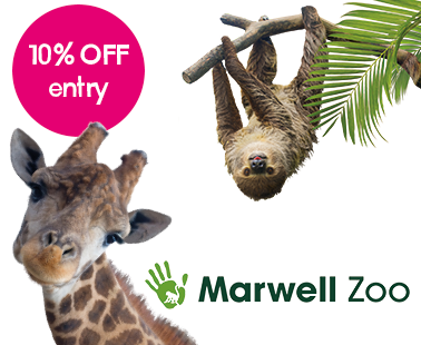Marwell Zoo - M1 Service