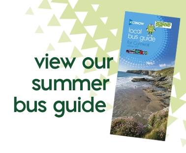 Summer Bus Guide