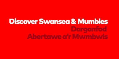 Image for 'Discover Swansea & Mumbles'